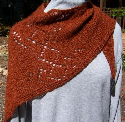 Autumn Cozy shawl