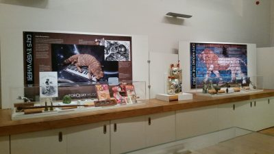 """An exhibit of """"cats in history"""""""